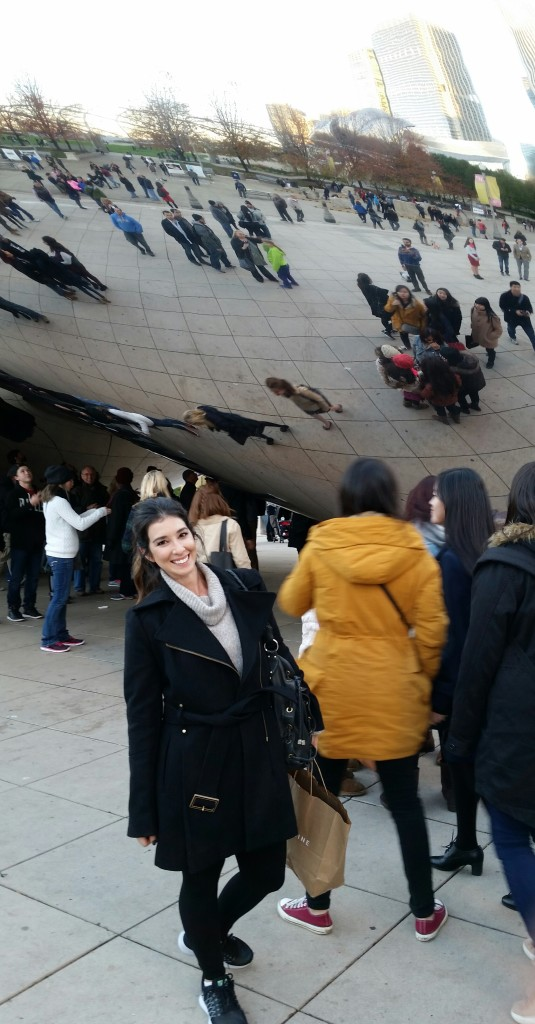 november photos chicago bean