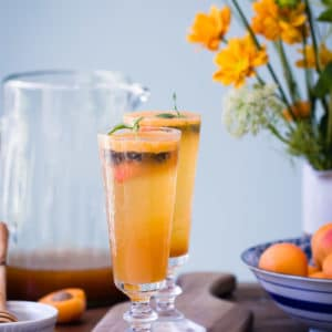 If you're searching for a bubbly, refreshing, non-alcoholic beverage to enjoy during the summer months, this Blueberry Apricot Lemon Verbena Shrub is just the thing.