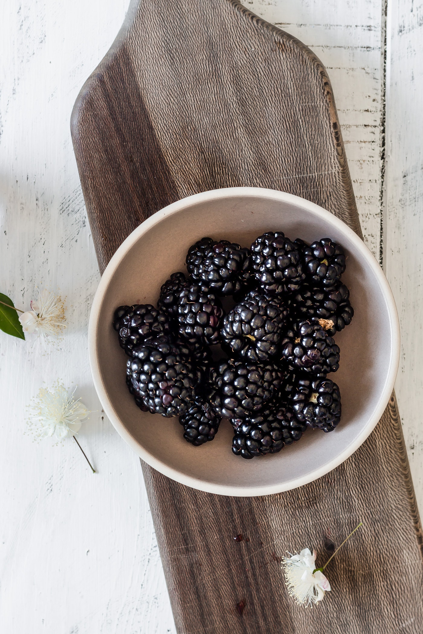 bowl of blackberries for an ice cream float recipe