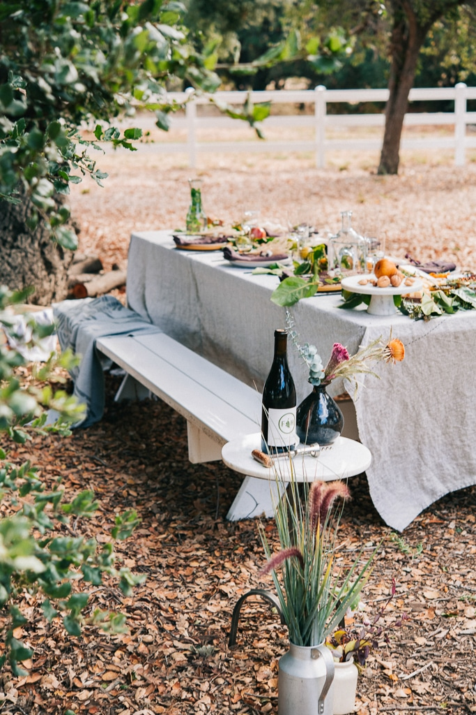 autumn table under a tree